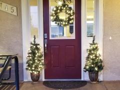 Improved Front Door - Remodel