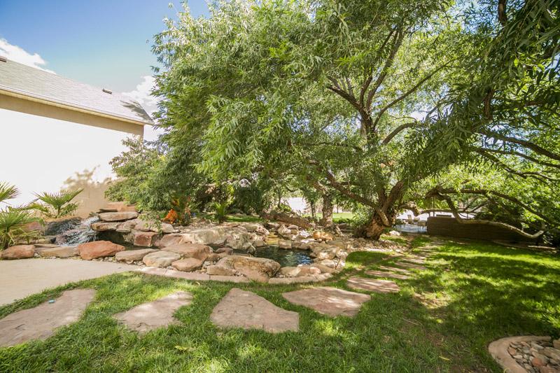 Backyard Tree Path