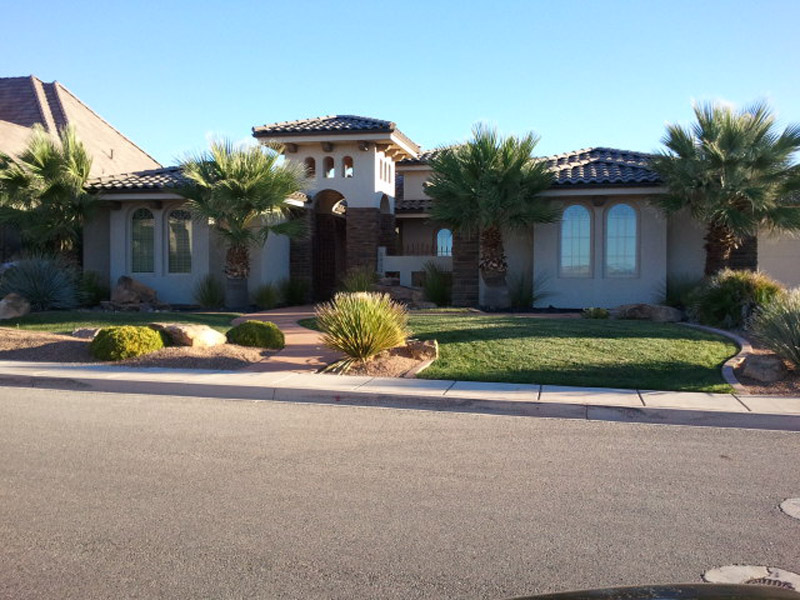 Castlerock Palm Tree Home